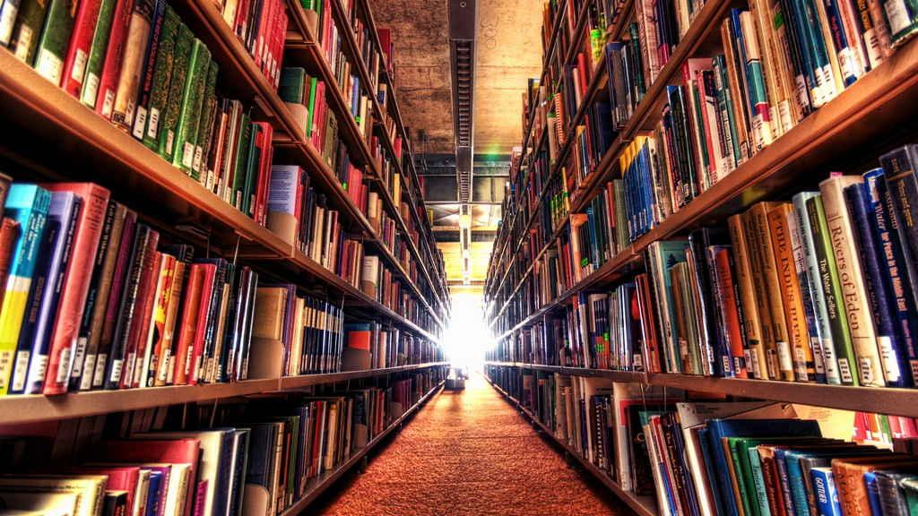 библиотека Эльзы Моранте