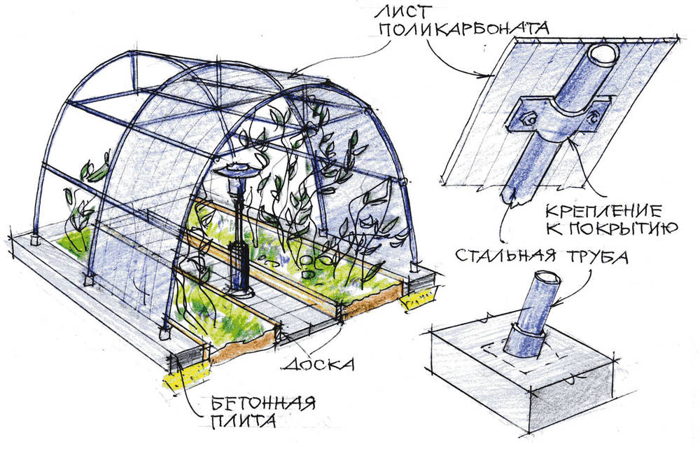 Конструкция теплицы из поликарбоната
