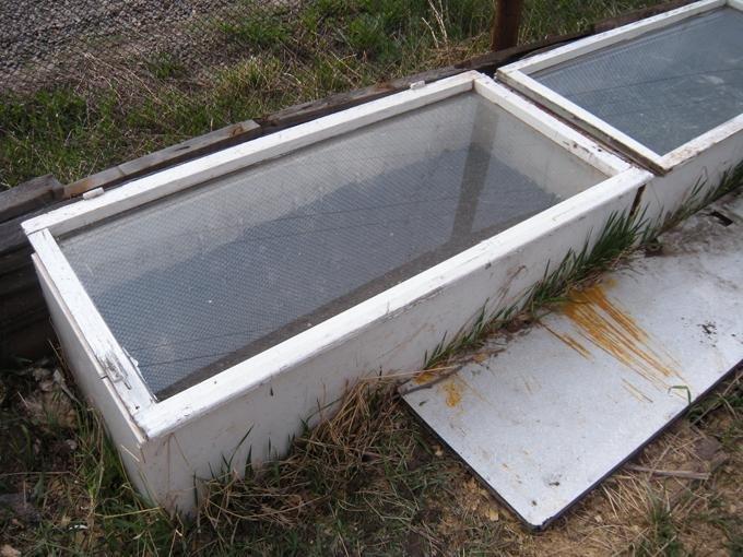 Парник из старого холодильника для дачи