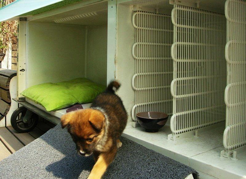 Будка для собаки из старого холодильника