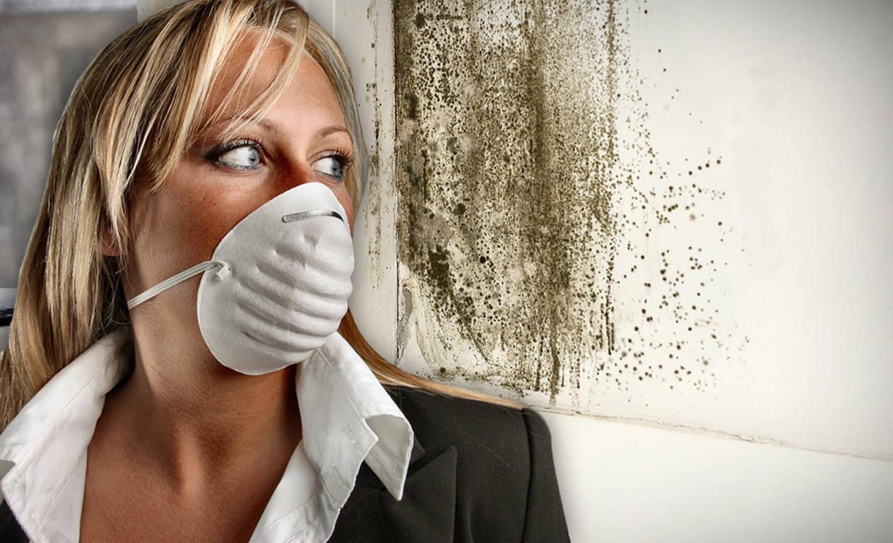 Плесень в доме может вызвать серьезные проблемы со здоровьем