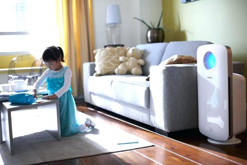 Как быстро очистить воздух в доме