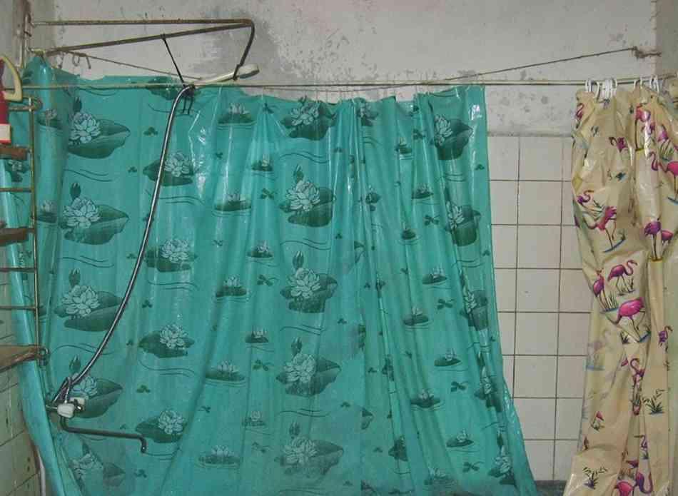 Самые грязные вещи в доме занавеска для ванной