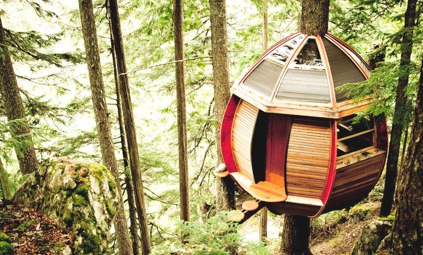 Замечательный дом на дереве: единение с природой